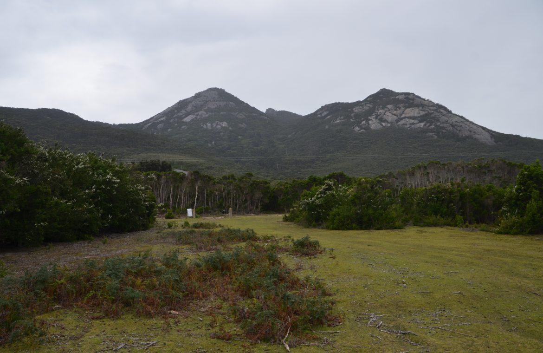 bushwalk mt strzelecki flinders island