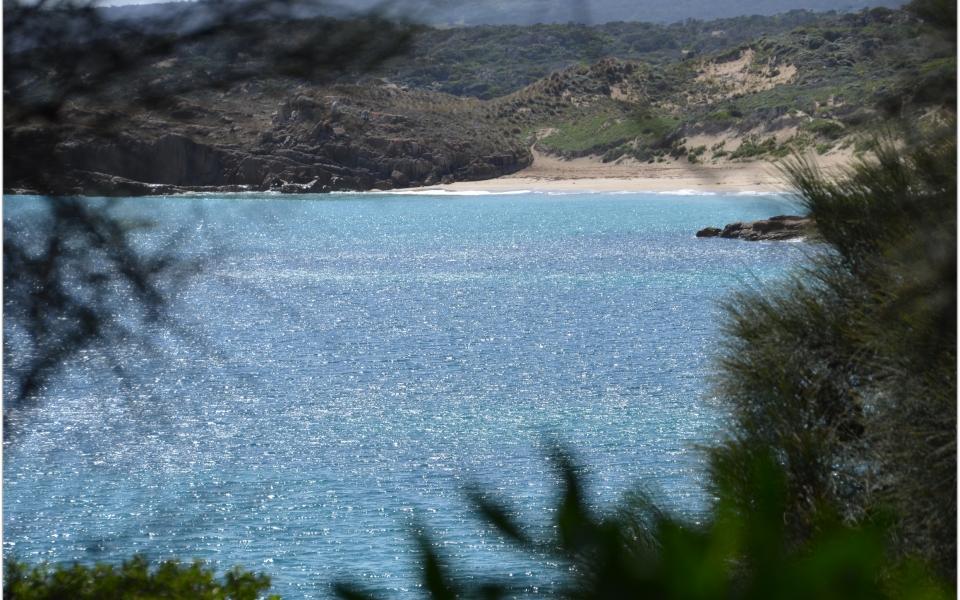 allports beach emita flinders island