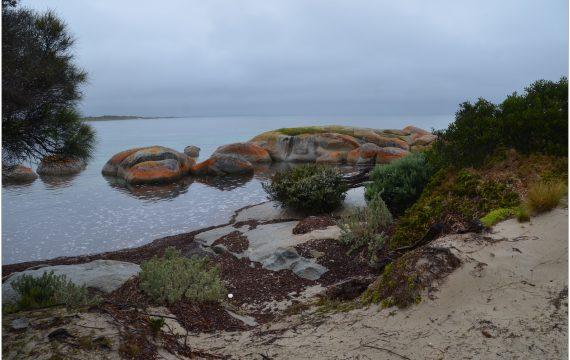 Flinders Island Travel Blog
