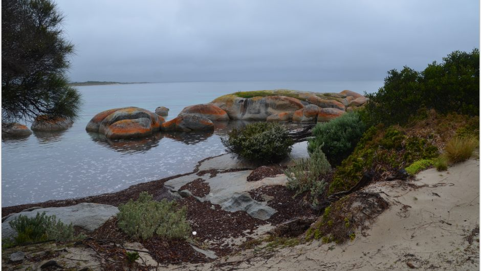 Flinders Island Travel Blog