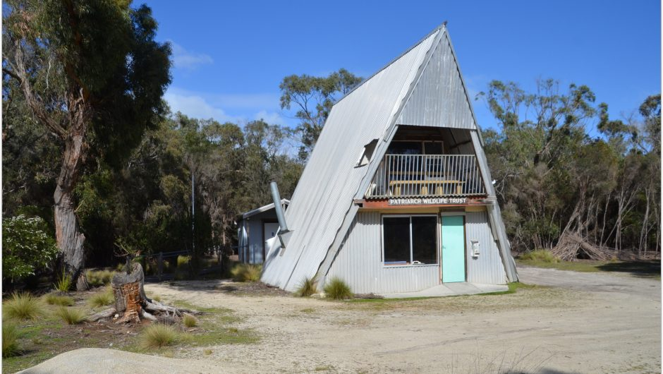 camping patriarchs wildlife sanctuary flinders island