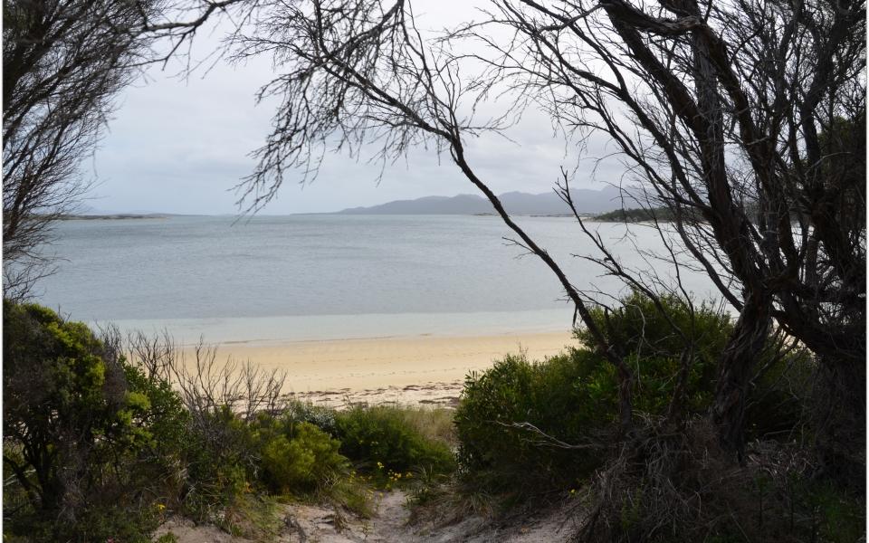 free camping yellow beach lady barron